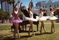 A group of ballet dancers in pink and white tutus, dancing in a park in central Adelaide. They are with a pianist who is playing a grand piano.