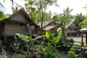 Traditional village housing made of coconut leaves and woven bamboo, Weather Coast.