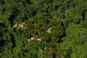 Aerial of village housing in lush jungle.